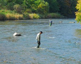 Eoin Fairgrieve fishing expert