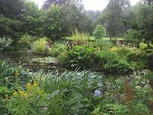 Monteviot - a gem of a garden