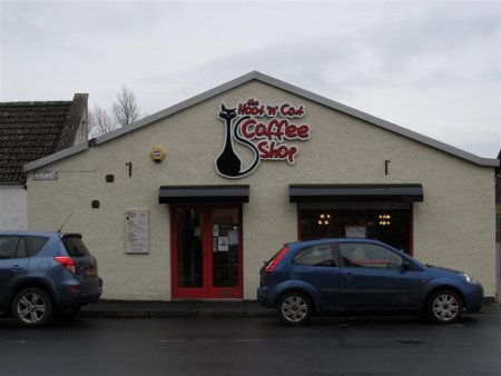 Hoot 'n' Cat cafe, Kelso