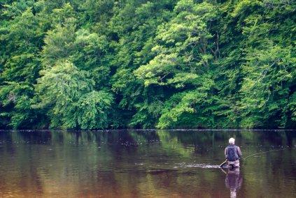 Fishing News